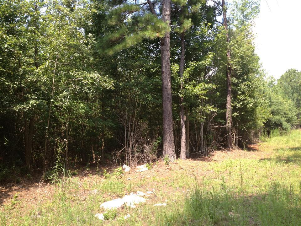 0 Griffith Acres Road - Photo 1