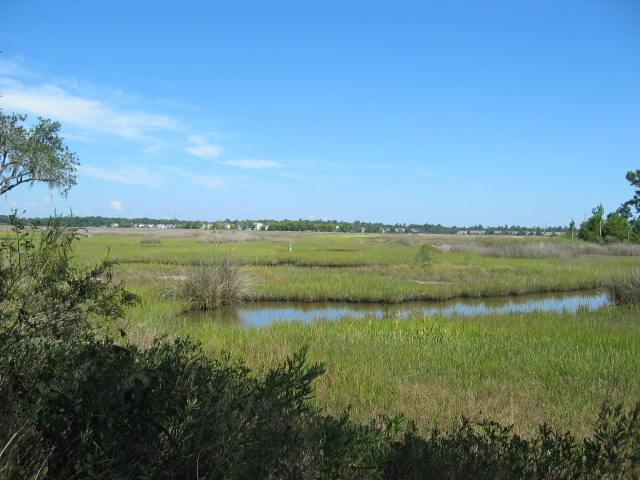 1701 Ancient Oaks Lane, Johns Island, SC 29455 (#17020920) :: The Cassina Group