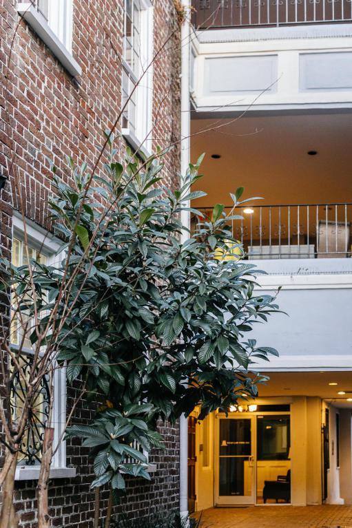 182 E Bay Street #303, Charleston, SC 29401 (#18004276) :: The Cassina Group