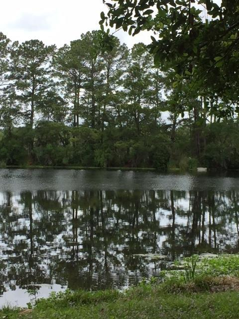 872 N Shem Drive, Mount Pleasant, SC 29464 (#18013674) :: The Cassina Group