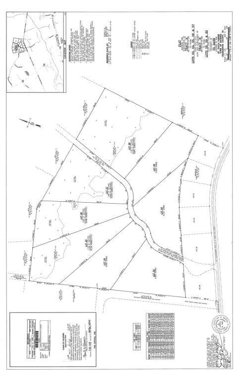 58 Pepper Grass Trail, Ravenel, SC 29470 (#18027416) :: The Cassina Group