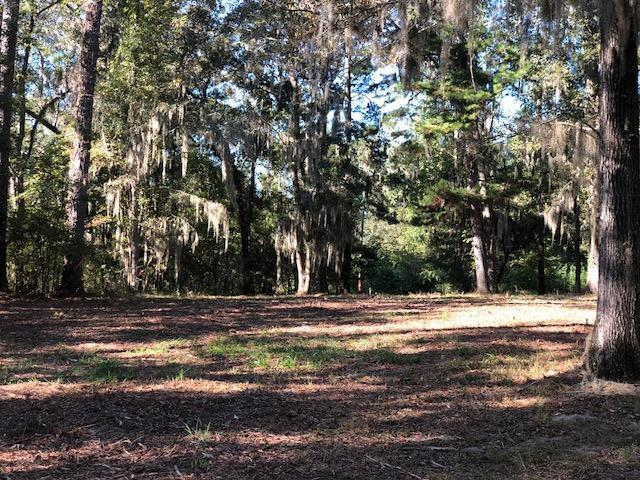 148 Castlebury Road, Walterboro, SC 29488 (#18029904) :: The Cassina Group