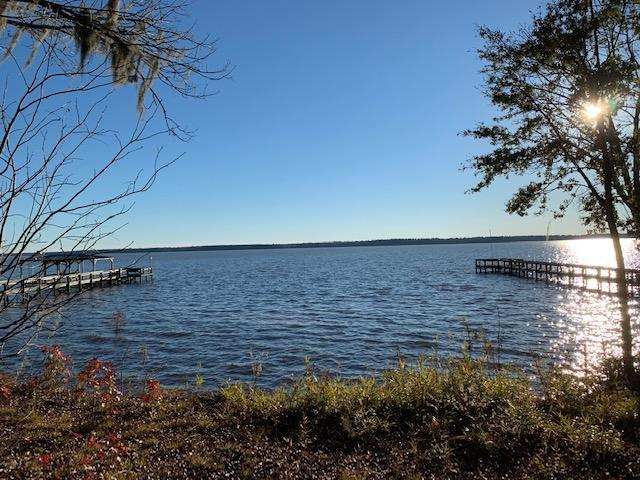 3418 Princess Pond Road, Summerton, SC 29148 (#18033053) :: The Cassina Group