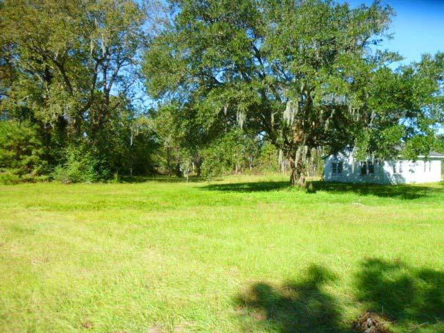4182 Betsy Kerrison Parkway, Johns Island, SC 29455 (#19001538) :: The Cassina Group