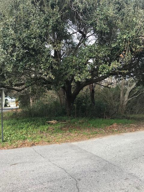 0 James Drive, Charleston, SC 29412 (#19002397) :: The Cassina Group