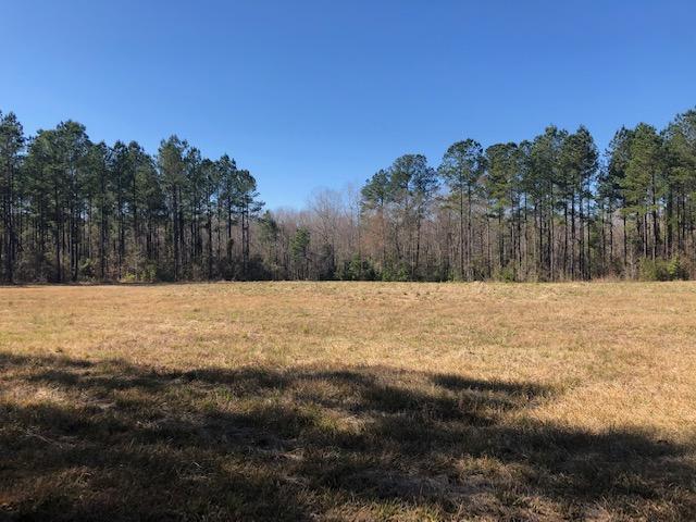 0 Savannah Farm Ln - Photo 1