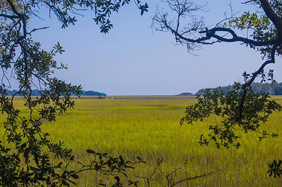 8707 Middleton Point Lane, Edisto Island, SC 29438 (#19013901) :: The Gregg Team