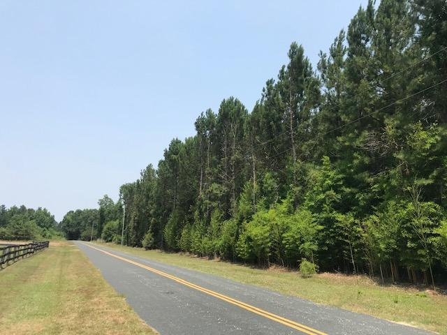 0 Epps Rd, New Zion, SC 29111 (#19017327) :: The Cassina Group
