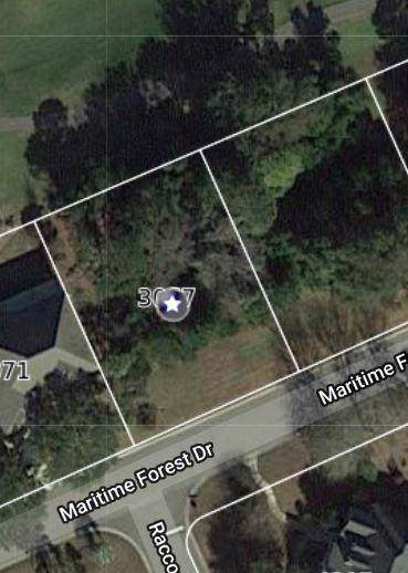 3067 Maritime Forest Drive, Johns Island, SC 29455 (#19021824) :: The Cassina Group