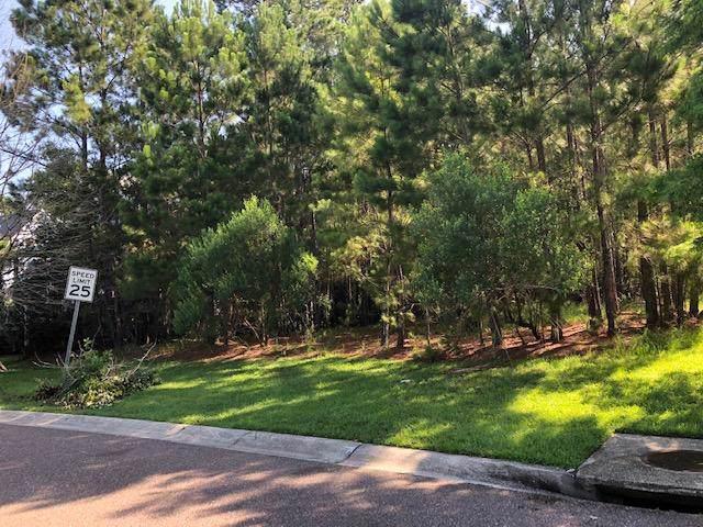 2212 Branch Creek Drive - Photo 1