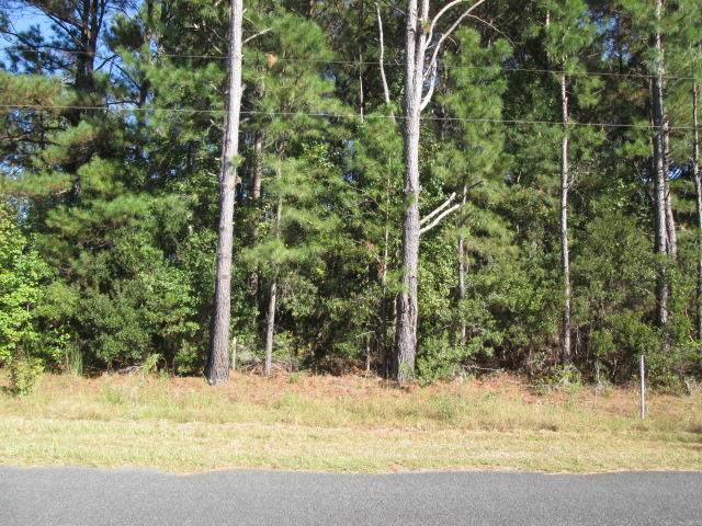 0 A Can City Road, Walterboro, SC 29488 (#19029035) :: The Cassina Group