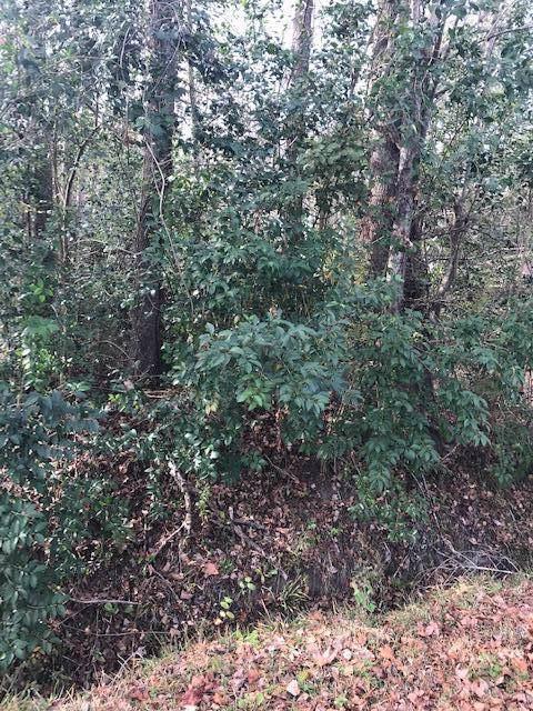 0 Pandora Drive, Goose Creek, SC 29445 (#19033308) :: The Cassina Group