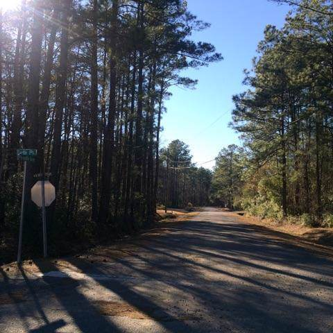 0 Picadilly Loop, Summerville, SC 29483 (#20000242) :: Realty One Group Coastal