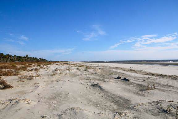 291 Pelican Flight Drive Lot 15, Dewees Island, SC 29451 (#20001952) :: The Cassina Group