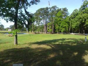 Lot 60 Lagrange Road, Georgetown, SC 29440 (#20002455) :: Realty ONE Group Coastal