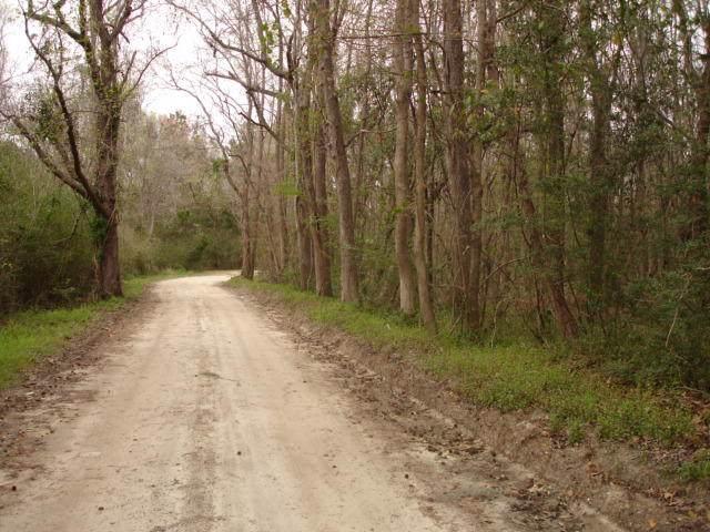 2 Mt. Carmel Hwy., Walterboro, SC 29488 (#20003028) :: The Cassina Group