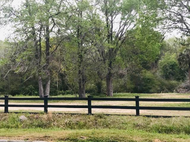 1352 Porchers Bluff Road, Mount Pleasant, SC 29466 (#20004333) :: The Cassina Group