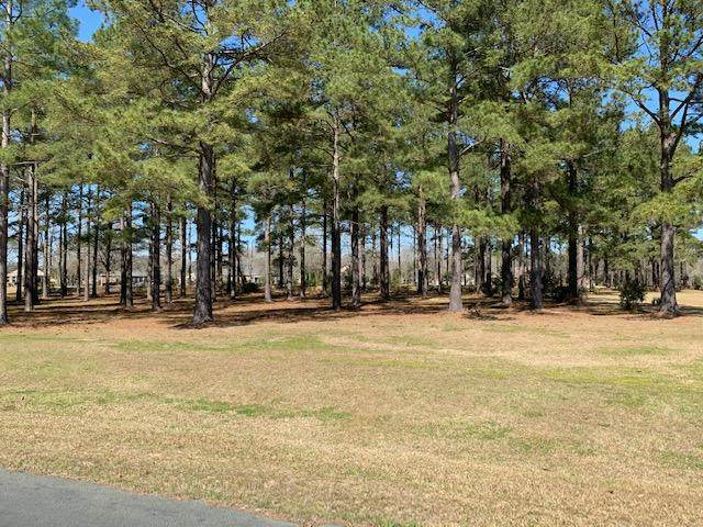 409 Pine Lake Court, Manning, SC 29102 (#20007655) :: The Cassina Group