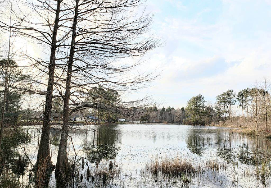 Tbd Fountain Lake Drive - Photo 1