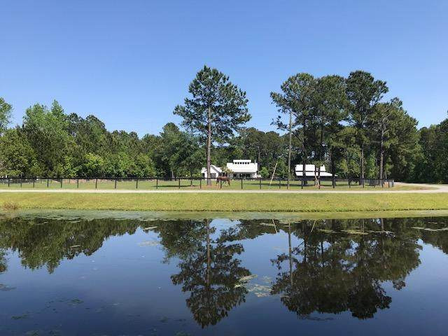 1423 Tannanger Trail, Awendaw, SC 29429 (#20014450) :: The Cassina Group