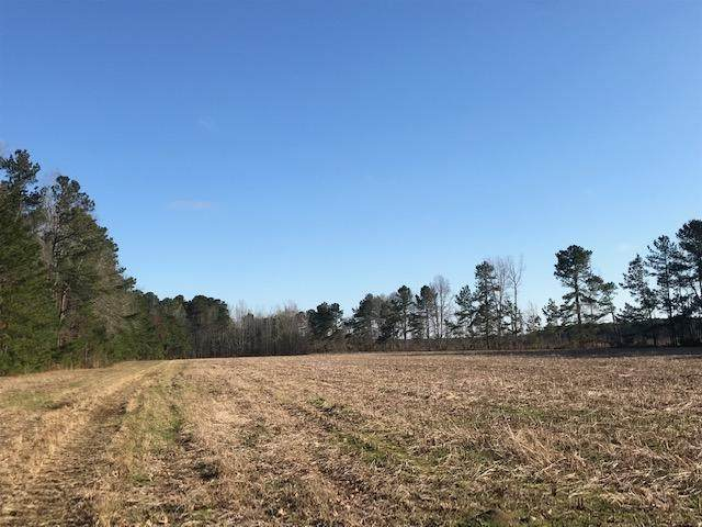 0 Pine View Farm Road, Lane, SC 29564 (#20016144) :: The Cassina Group