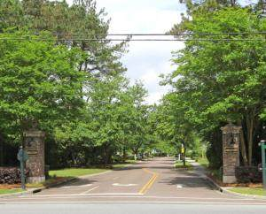 1425 Appling Drive, Mount Pleasant, SC 29464 (#20016506) :: The Gregg Team
