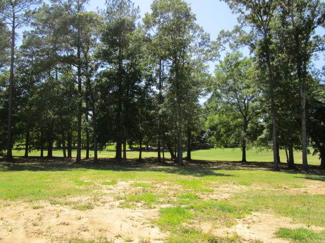 Lot 3 Saluda Drive, Santee, SC 29142 (#20017757) :: Realty ONE Group Coastal