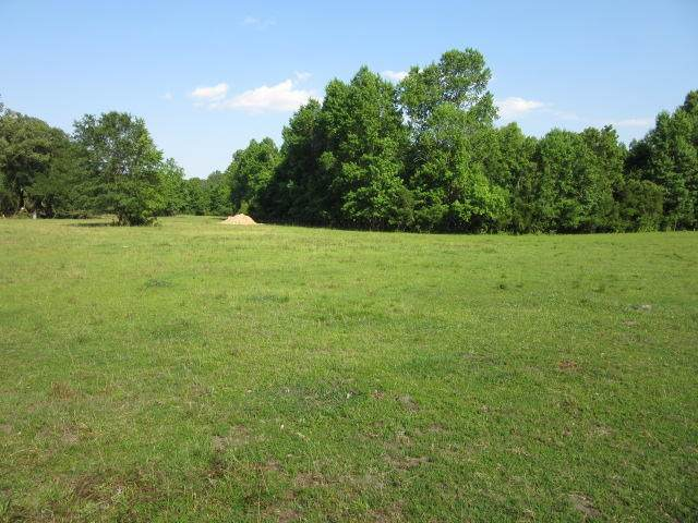 4876 A Oak Willie Road, Hollywood, SC 29449 (#20018291) :: Realty ONE Group Coastal