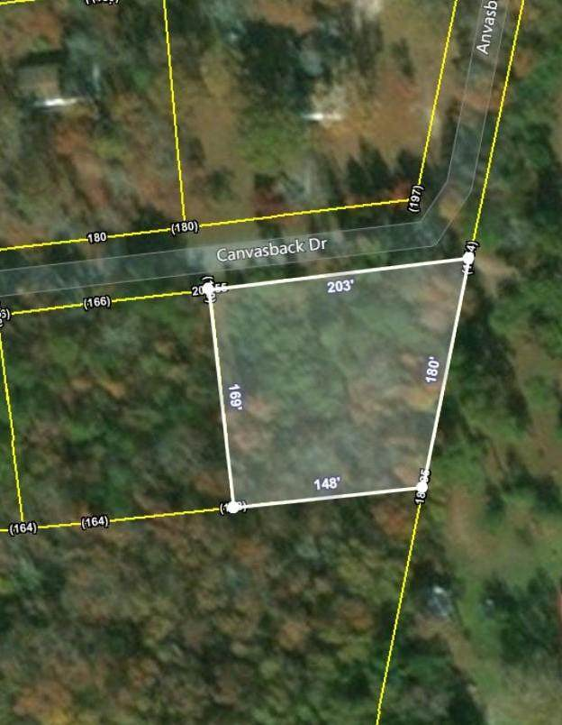 Lot 17 Canvas Back Drive, Eutawville, SC 29048 (#20019326) :: Realty One Group Coastal