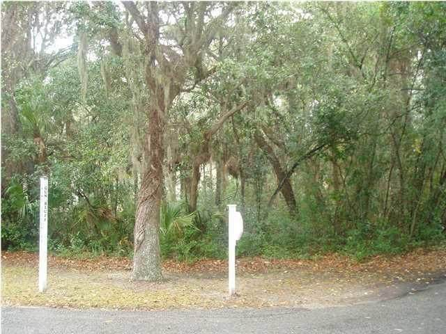 1 Gun Bluff Road, Edisto Island, SC 29438 (#20020342) :: Realty ONE Group Coastal