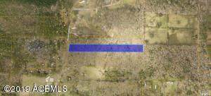 Tbd Community Center Road, Beaufort, SC 29902 (#20023560) :: The Cassina Group