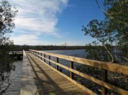 8384 Camp Gregg Lane, North Charleston, SC 29418 (#20029042) :: The Cassina Group