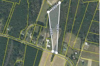 Tbd 1st Bend Road, Harleyville, SC 29448 (#20030049) :: Realty ONE Group Coastal