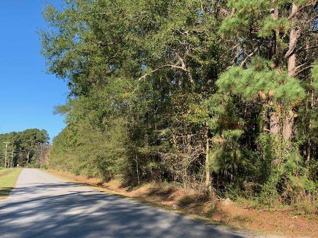 187 Curve Inn Road, Holly Hill, SC 29059 (#20031643) :: CHSagent, a Realty ONE team