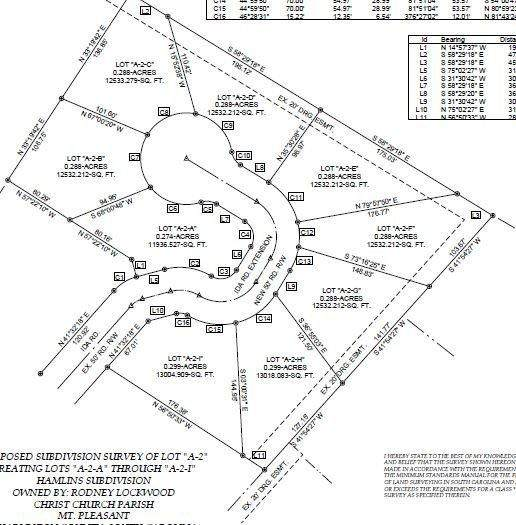 1410 Ida Road, Mount Pleasant, SC 29466 (#20033806) :: Flanagan Home Team