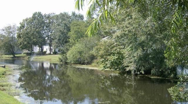 206 Waterwood Drive, Goose Creek, SC 29445 (#21001422) :: Realty ONE Group Coastal