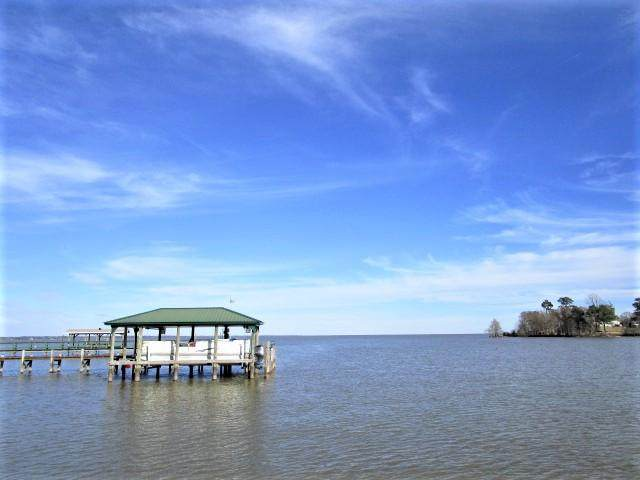 244 Lake Marion Lane, Vance, SC 29163 (#21001502) :: The Cassina Group