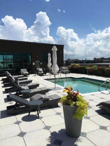 5 Gadsdenboro Street #217, Charleston, SC 29401 (#21001542) :: Realty ONE Group Coastal