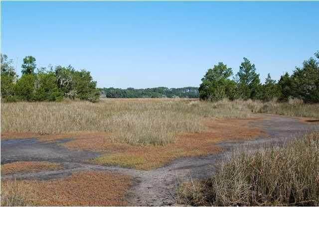8480 Chisolm Plantation Road, Edisto Island, SC 29438 (#21002893) :: Realty ONE Group Coastal