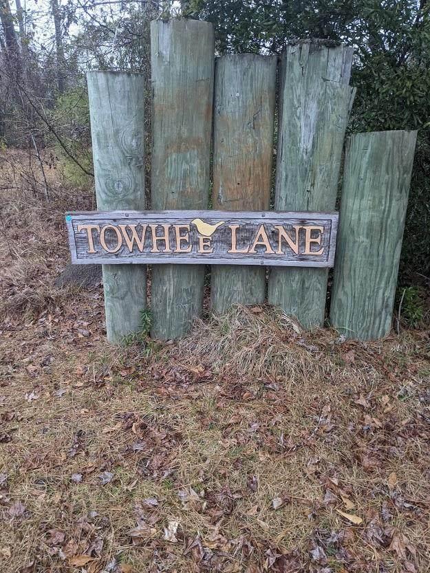 0 Towhee Lane, Mcclellanville, SC 29458 (#21005175) :: The Cassina Group