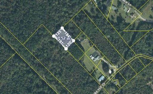0 Lake Hill Drive, Saint Stephen, SC 29479 (#21011014) :: Realty ONE Group Coastal