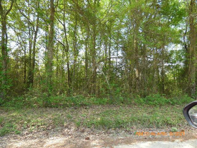 Lot 3 Irving Road, Monetta, SC 29105 (#21011384) :: Flanagan Home Team