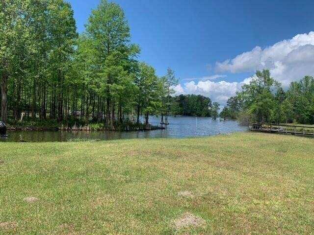 111 Jacks Lane, Bonneau, SC 29431 (#21011470) :: Realty ONE Group Coastal