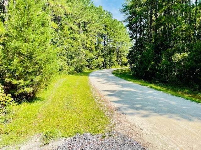 1041 Bridle Gate Trail, Awendaw, SC 29429 (#21020942) :: Flanagan Home Team