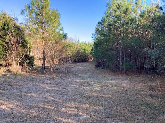 8815 Old Number Six Highway, Santee, SC 29142 (#21023177) :: Hergenrother Realty Group