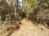 114 Reed Hall Road, Summerville, SC 29483 (#21028494) :: Realty ONE Group Coastal