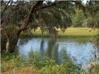 0 Fenwick Plantation Road, Johns Island, SC 29455 (#16010089) :: The Gregg Team