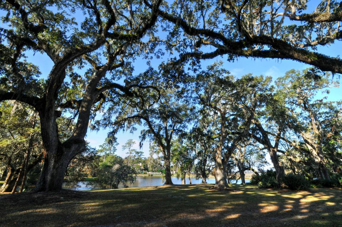 348 Coinbow Drive, Mount Pleasant, SC 29464 (#16029870) :: The Cassina Group