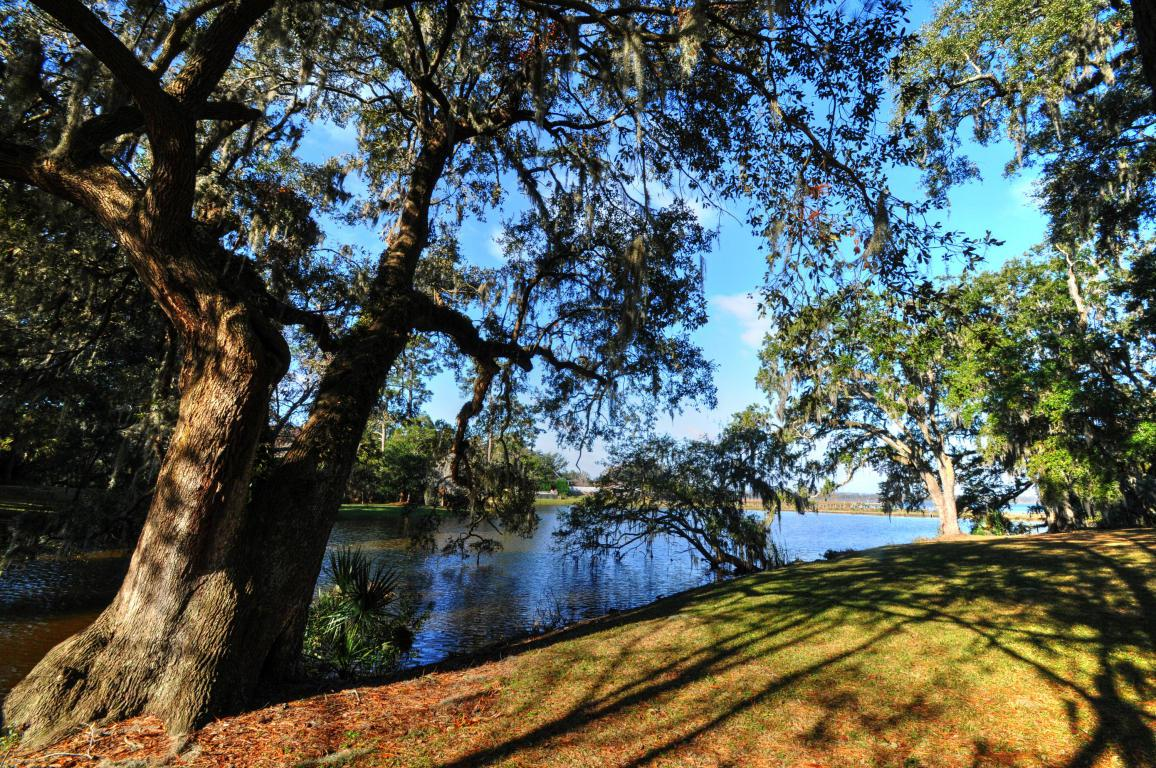 349 Coinbow Drive, Mount Pleasant, SC 29464 (#16029872) :: The Cassina Group