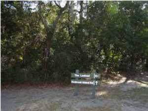 3310 Seabrook Island Road - Photo 1